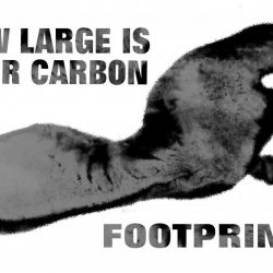 Measuring your Carbon Footprint with RPG-XML Suite and Google